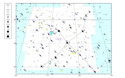 La constellation de l'été – Le Cygne